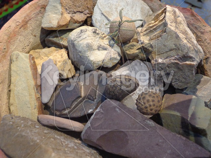 colorful stones Photo #55045
