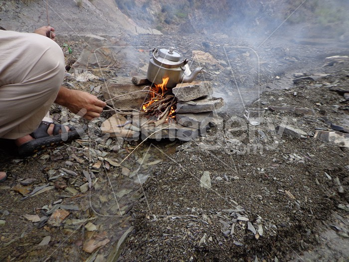tea making in wild Photo #55040