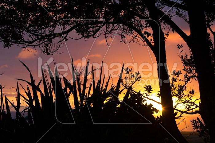 Stunning Sunset Photo #55356