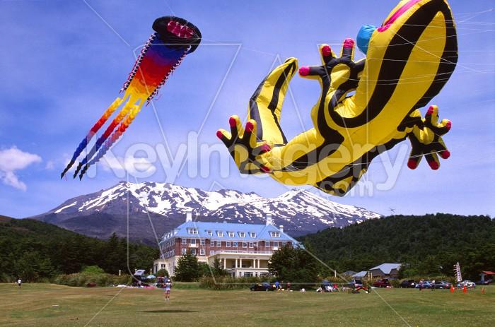 Kite Day Photo #56148