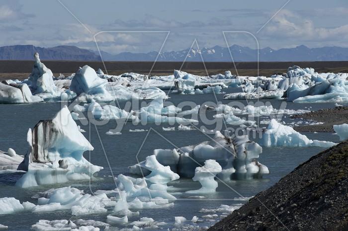 Floating Icebergs in Jokulsarlon Glacier Lagoon Iceland Photo #57136