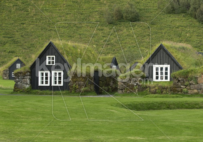 Traditional iclandic houses with grassy roofs. Photo #57139