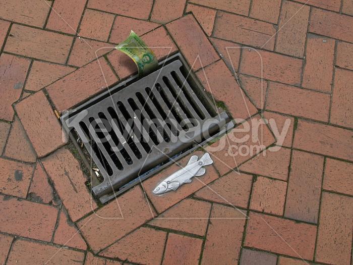 20 bucks down the drain Photo #4276
