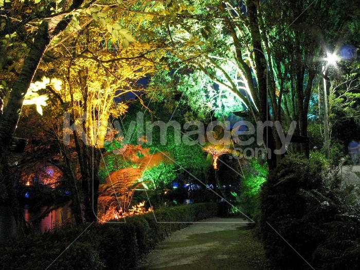 A colourful pathway at Pukekura Park Photo #6543