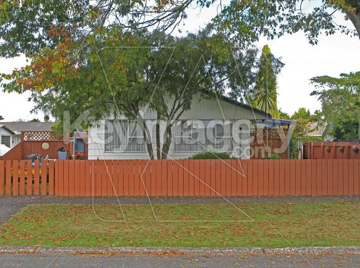 A New Zealand suburban house Photo #566