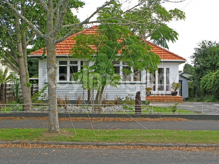 A New Zealand suburban house Photo #573