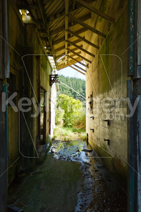 Abandoned Meat Processing Plant Photo #51940