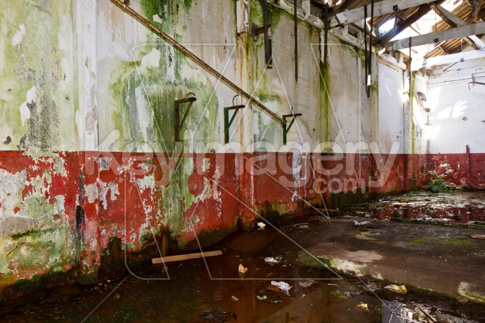 Abandoned Meat Processing Plant Photo #51944