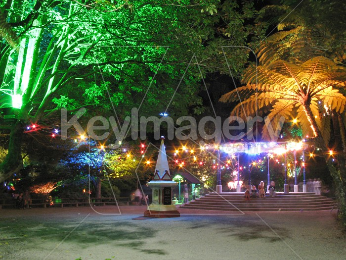 Admiring the colourful lights at Pukekura Park Photo #6557