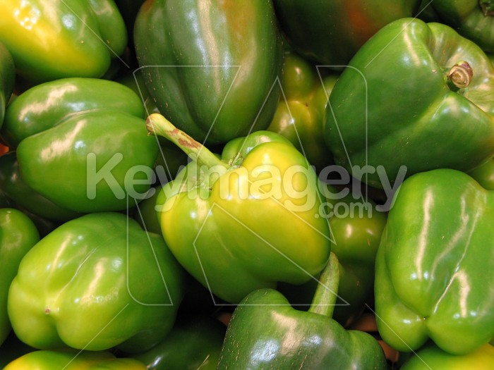 Another bunch of green capsicums Photo #2595