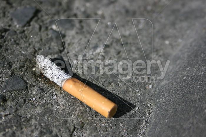 Cigarette butt close up in gutter Photo #4963