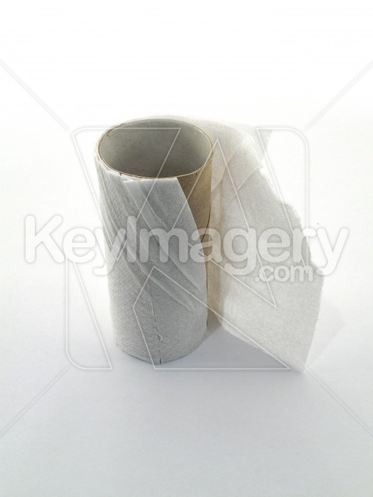 Empty toilet tissue roll Photo #1751