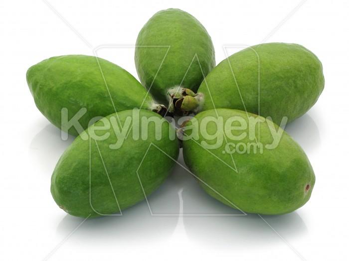 Fresh Feijoa Fruit Photo #1171