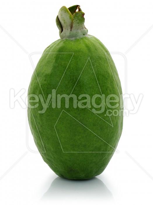 Fresh Feijoa Fruit Photo #1175