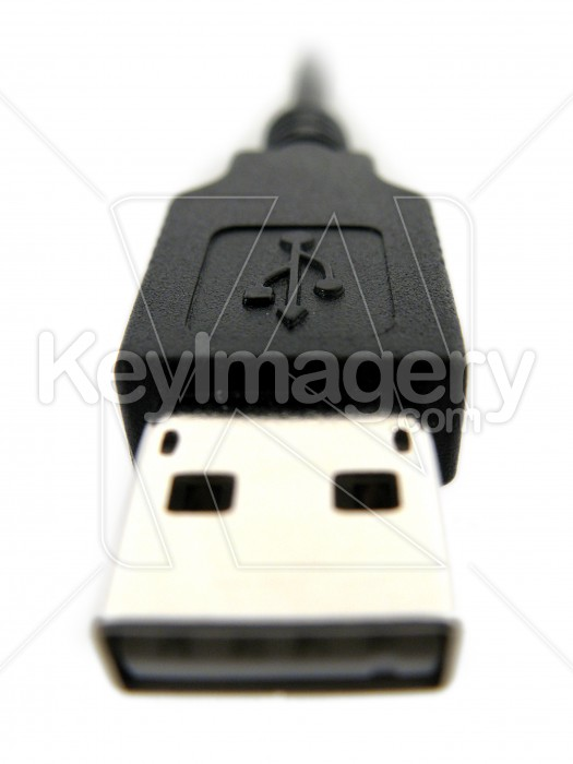 Full size USB plug and cable Photo #2261