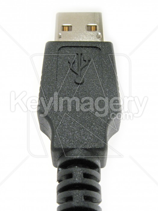 Full size USB plug and cable Photo #2263