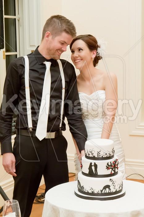 Groom and Bride cutting wedding cake Photo #53089
