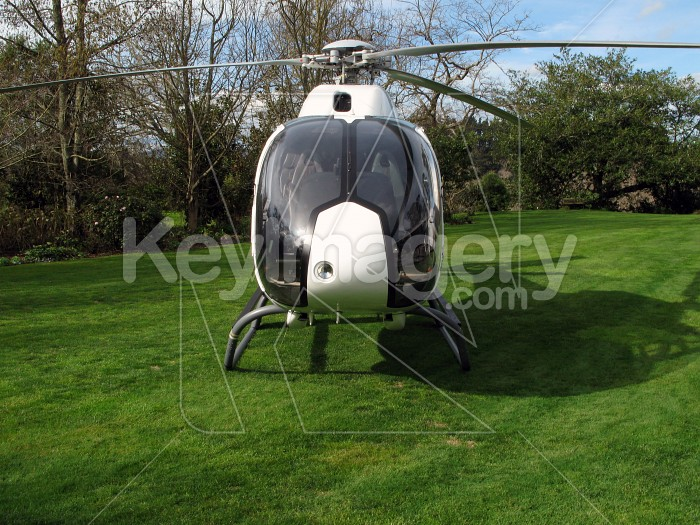 Helicopter front-on with grass Photo #4289