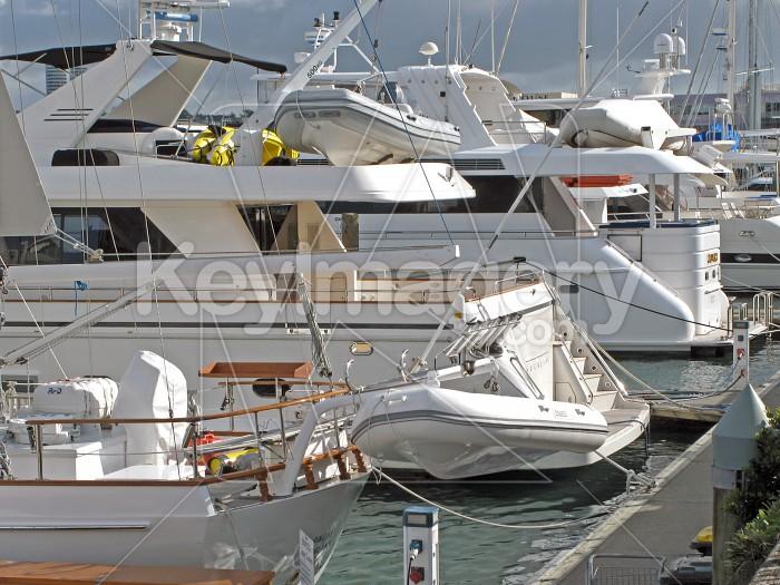 Luxury boats at the Marina - Landscape Photo #2071
