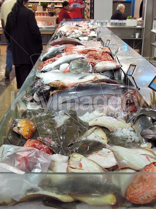 Mixed fish for sale Photo #2056