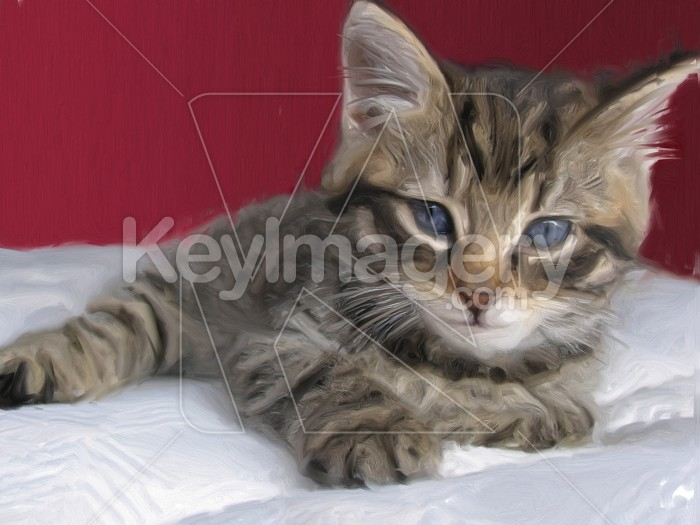 Portrait of a Kitten (oil painting) Photo #2529