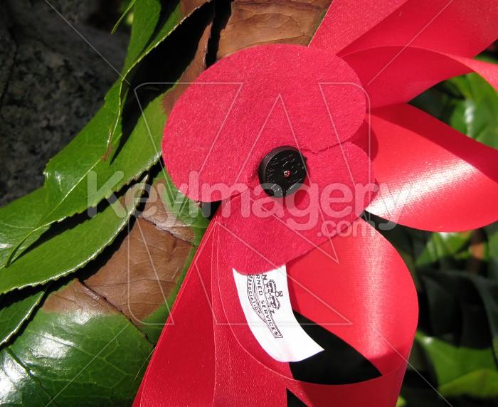 Red ANZAC poppy Photo #1482