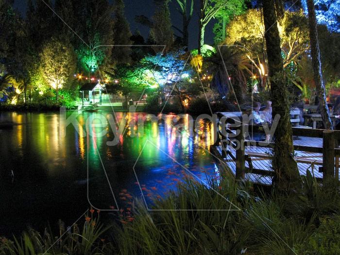 Reflections on the lake at Pukekura Park Photo #6554