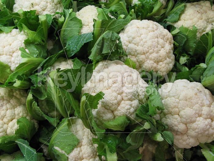 Stack of fresh Cauliflower Photo #2597