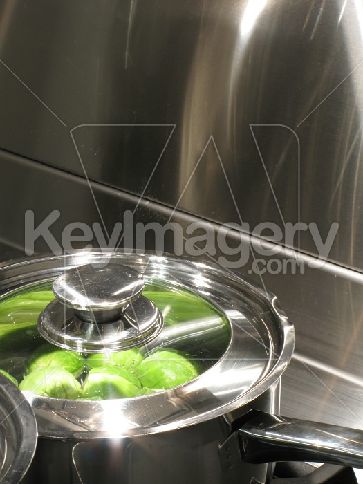 Stainless steel kitchen cooktop and pots Photo #2105