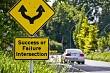 Success or Failure Choice Concept