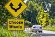Choose Wisely Concept