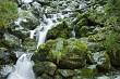 Waterfall in Arthurs Pass National Park