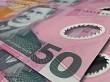 New Zealand 50 notes close up