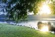 Sunrise over Hamilton Lake