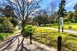 Memorial Park and Parana Park, Hamilton, NZ
