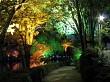 A colourful pathway at Pukekura Park