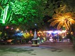 Admiring the colourful lights at Pukekura Park