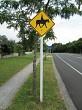 Caution - Beware of Horses