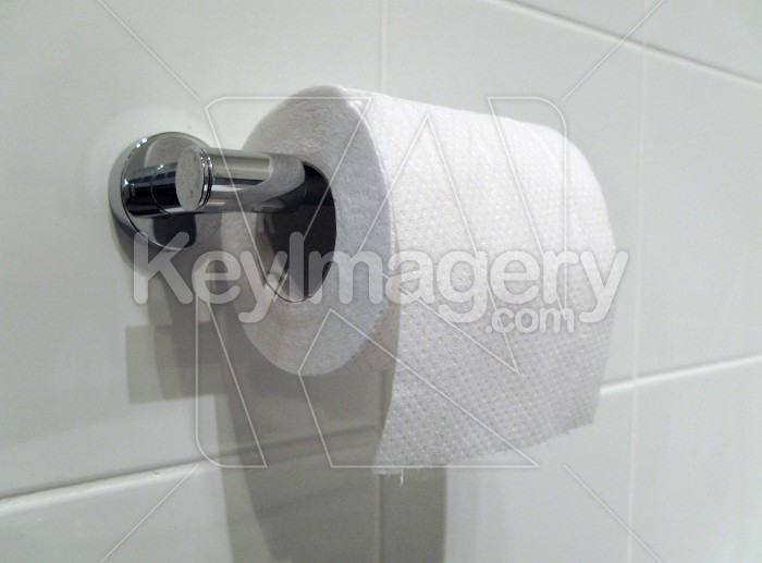 Toilet Paper or Tissue on the Holder Photo #1744