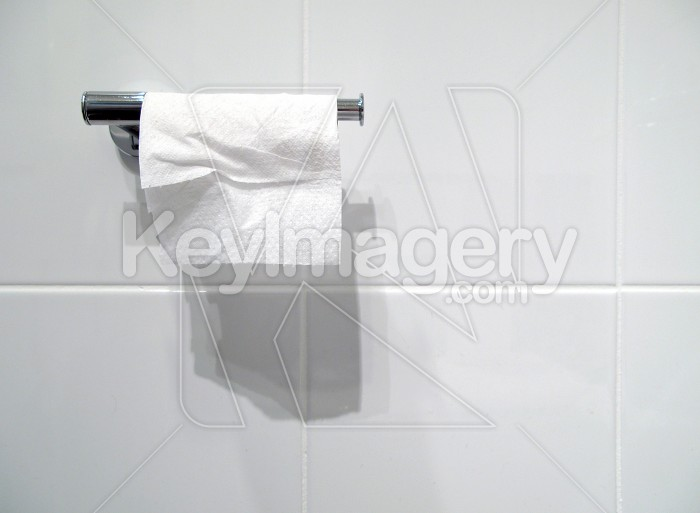 Toilet Paper or Tissue on the Holder Photo #1746