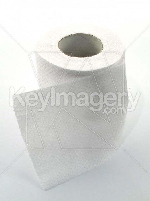 Toilet Paper or Tissue Photo #1750