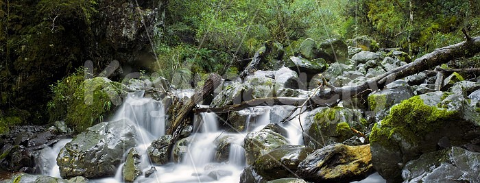 Waterfall in Arthurs Pass National Park Photo #20967