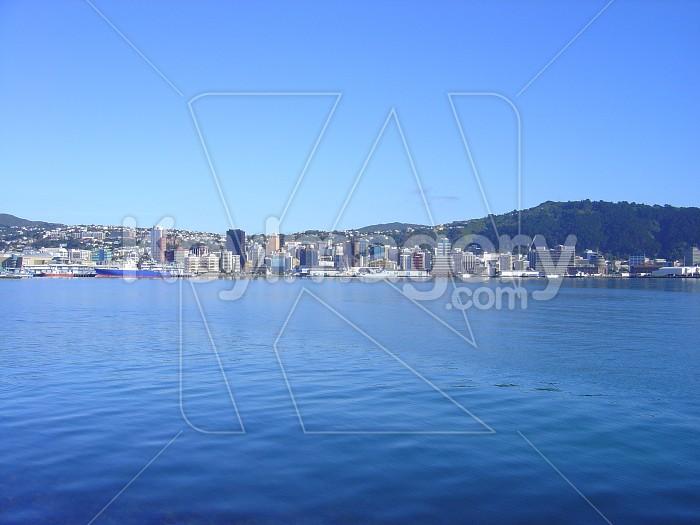 Wellington Harbour Photo #1690