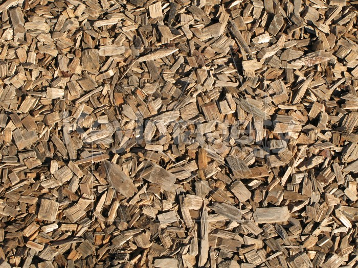 Wood chip texture Photo #2475