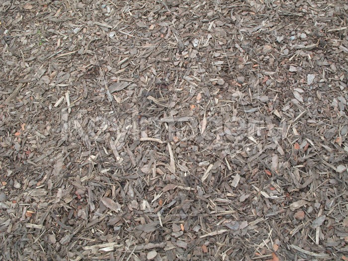Wood chip texture Photo #2486