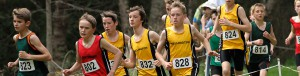 Inter-Regional Cross Country 2014