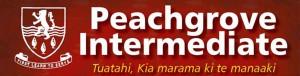 Peachgrove Intermediate Year 8 Formal 2014