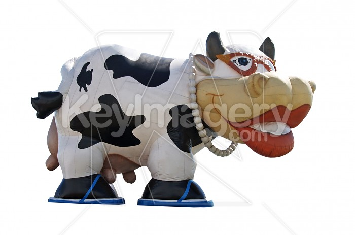 A Large Blow-up Cow Photo #4781