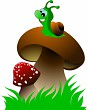 Funny green snail and two mushrooms on green grass. Vector illus