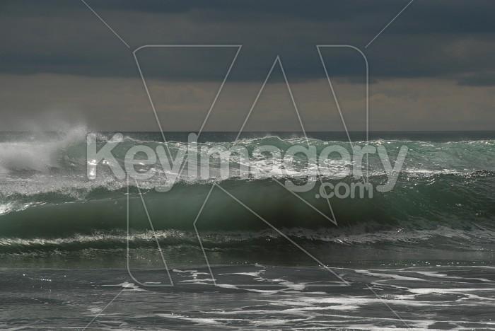 Sea Sculpture Photo #4325